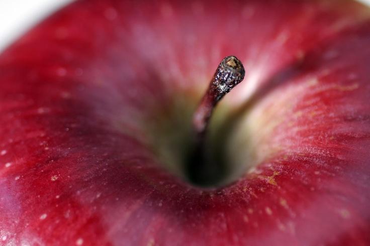 a fresh crisp apple