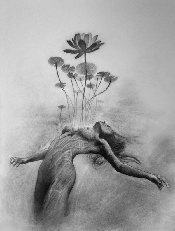 Heather McLean #illustration #drawing #flowers ...