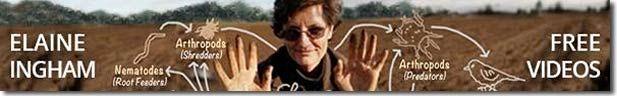 FREE Videos by Dr. Elaine Ingham