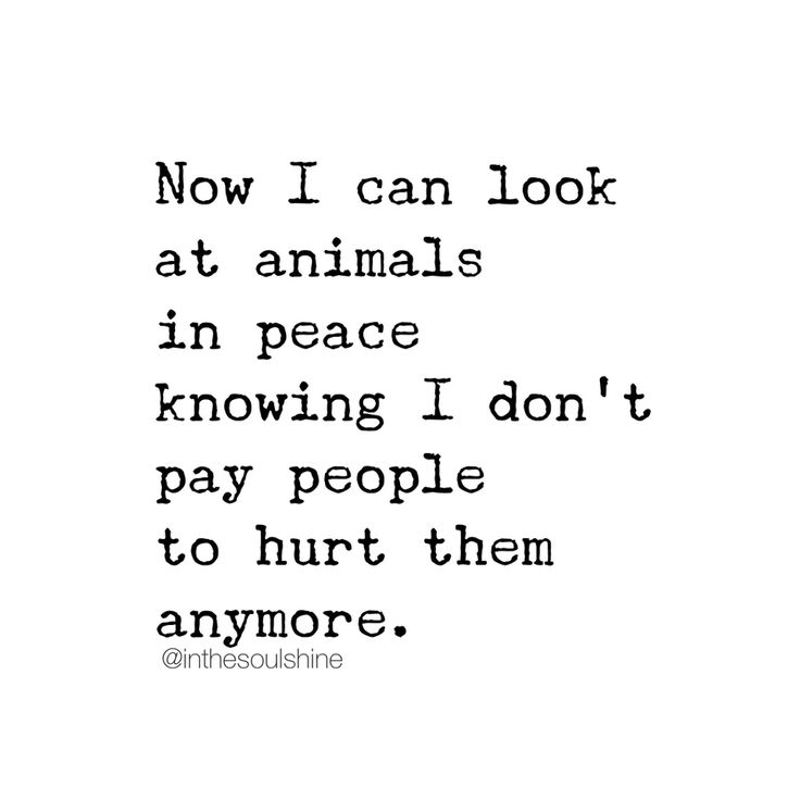 Vegan Quotes Unique 85 Best Vegan Quotes Images On Pinterest