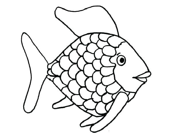 Striped Bass Fish Coloring Pages Rainbow Fish Template Fish