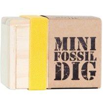 Seedling - Mini Fossil Dig #EntropyWishList #PintoWin