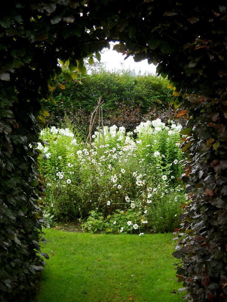 Secret Garden: 10 Best Images About Can Always Dream About Moon Gates On