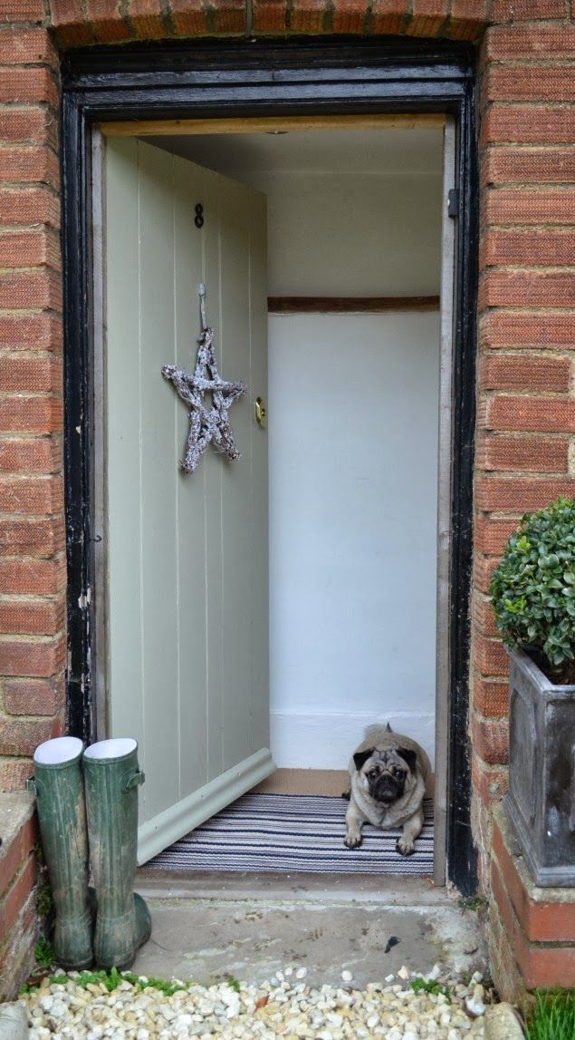 West Egg Blog modern country living with pug!