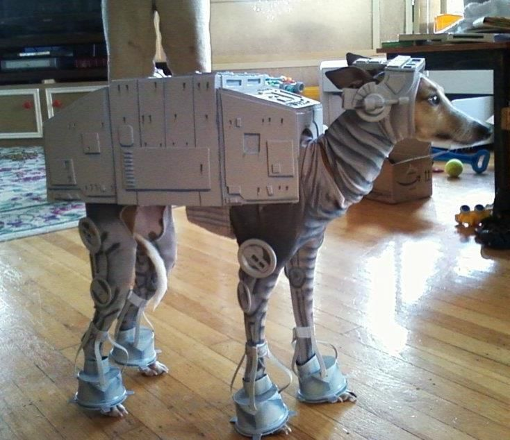 Time to walk the AT-AT.