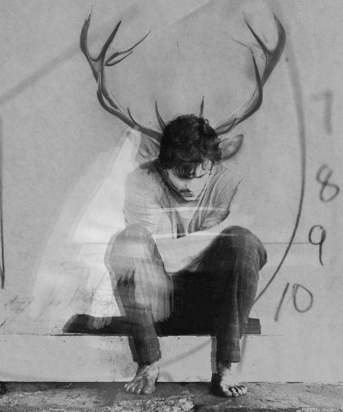 Best 25+ Will graham hannibal ideas on Pinterest | Will graham, Hannibal tv show and Was ...