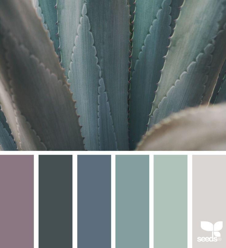 {color nature} - https://www.design-seeds.com/in-nature/succulents/color-nature-27