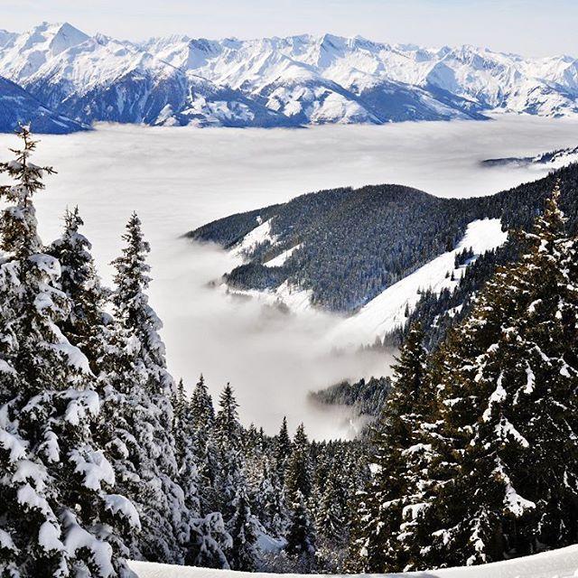 Вид с вершины горы. Долина  закрыта облаками. Мы стоим и наслаждаемся ярким солнышком, а кто-то грустит внизу от пасмурной погоды...Все солнышко у нас - поднимайтесь! #фотоизабеллазубкова #лес #австрия #снег #зима #горы #природа #пейзаж #путешествия #landscape #nature #travel #scenery #beautiful #view #scenic #tourism #natural #winter #environment #land #clouds #mountains #snow #izabellazip #фотограф