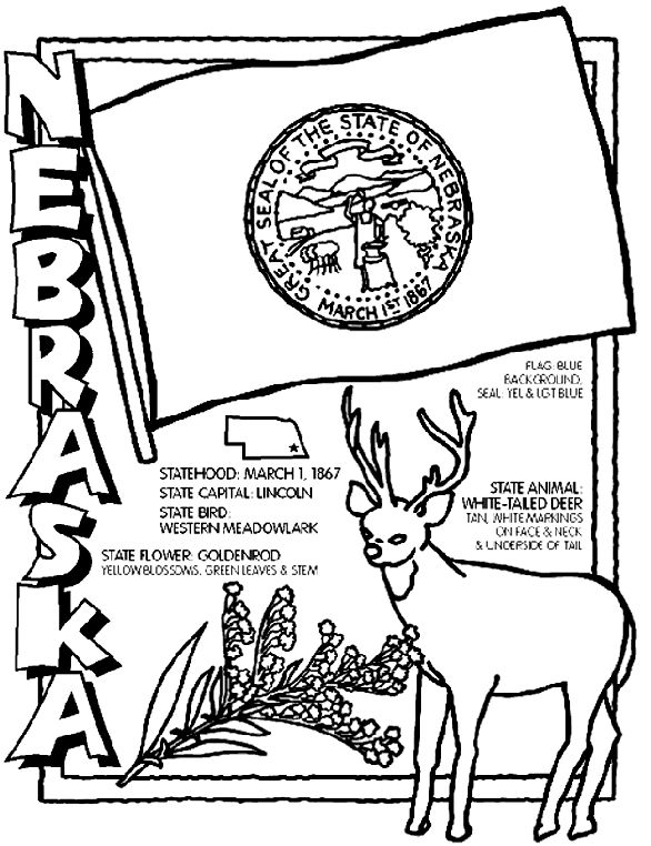 Use Crayola® crayons, colored pencils, or markers to color the Nebraska page.  1. Color the flag's seal yellow and sky blue. Color the background blue.  2. Color the White-Tailed Deer tan with white markings on the face, neck and underside of the tail.  3. Color the Goldenrod flower yellow and the leaves and stem green.