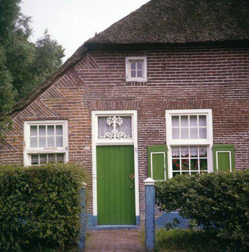Staphorst, deur met levensboom
