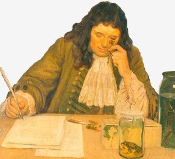 Antonie van Leeuwenhoek identified his religion as Dutch Reformed Calvinist, and believed that his discoveries only added to the miracle of creation  He did not have much interaction with the church over scientific issues, even though some of his discoveries were very new for their times. On one occasion, after presenting his discoveries of single-celled organisms to the Royal Society, the church was called to help determine whether Leeuwenkoek would have been able to see them.