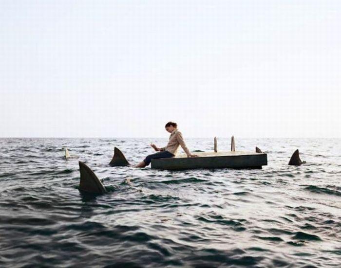 Jensen Beach Fl Shark Attack