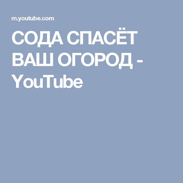 СОДА СПАСЁТ ВАШ ОГОРОД - YouTube