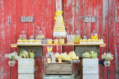 Lavish Dulhan South Asian bridal magazine; rustic barn wedding