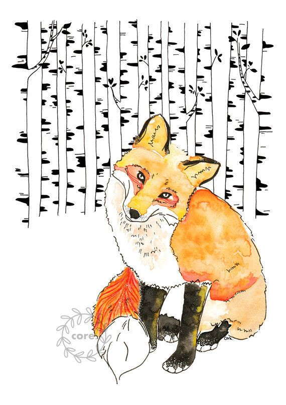 Fox in birch forest watercolour ink pen and pencil illustration art print / corejewelry