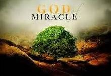 Miracle Stories of God's Provisions