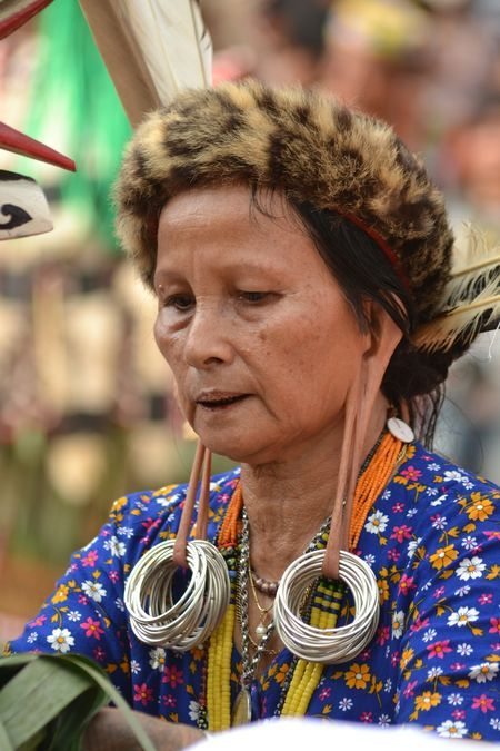 Long ears Dayak grandmother, .. symbol of honor, ...the last remaining you can see,. most girls do not follow the tradition of cultural roots