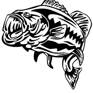 bass fish outline coloring pages bass fish outline coloring pages