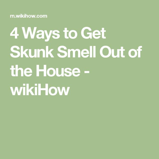 how to get skunk smell out of house 28 images how do
