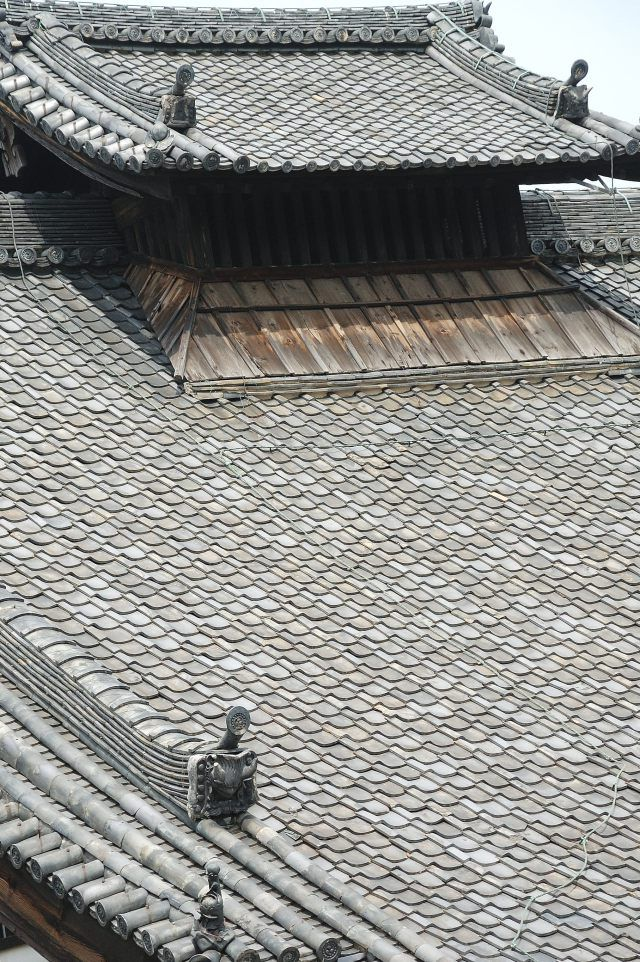 牡丹に埋まる京都・建仁寺法堂2016   wakasa15thfd