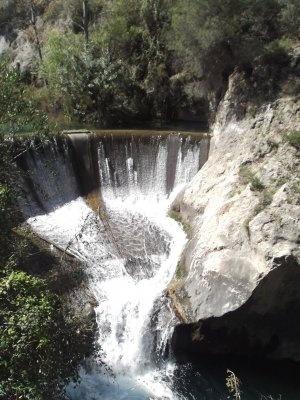 Una presa en la naturaleza
