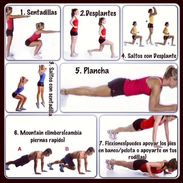 media rutina de ejercicio