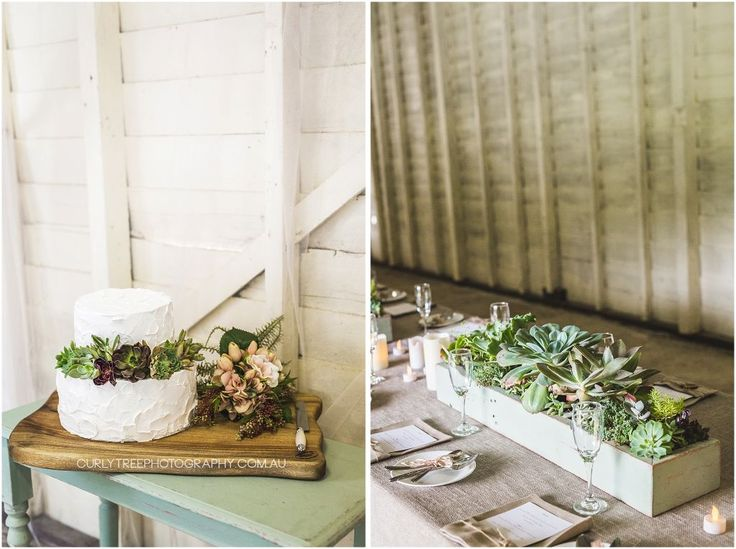 Barrington Tops Wedding Photography – Shayla+Brendan |   Succulent plants on wedding cake and table centre pieces