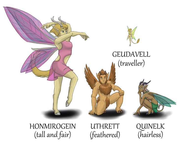 The four different kinds of Valadilian faeries. #CompanionGuide #faeries #DragonCalling
