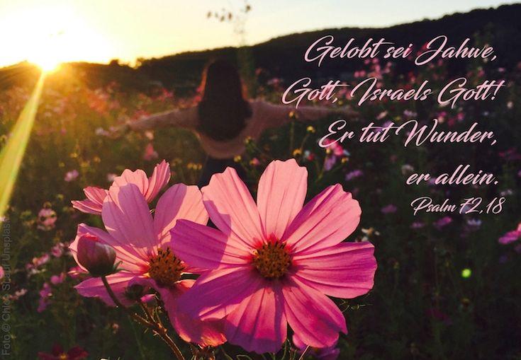 """2. Mose 17-18 // Psalm 72 // Matthäus 25,31-46 Die Bibellese für den 09.02.2018 aus dem Podcast """"Unser Großer - Die ganze Bibel""""."""