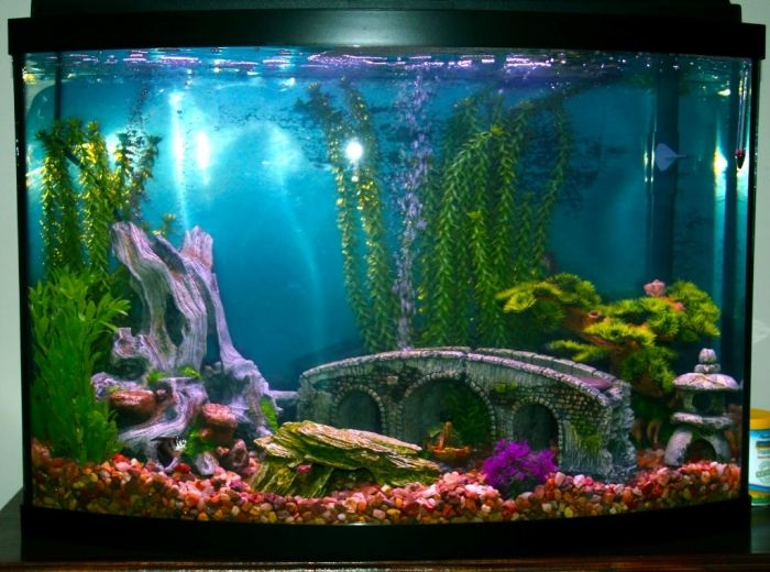 Best 25 fish tank decor ideas on pinterest fish tank - Aquarium mural deco ...
