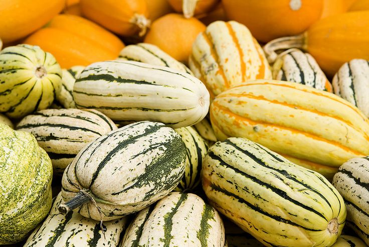 Learn how to identify and prepare eight popular winter squash varieties.