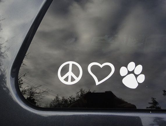 1000 Images About Pet Adoption Signs On Pinterest