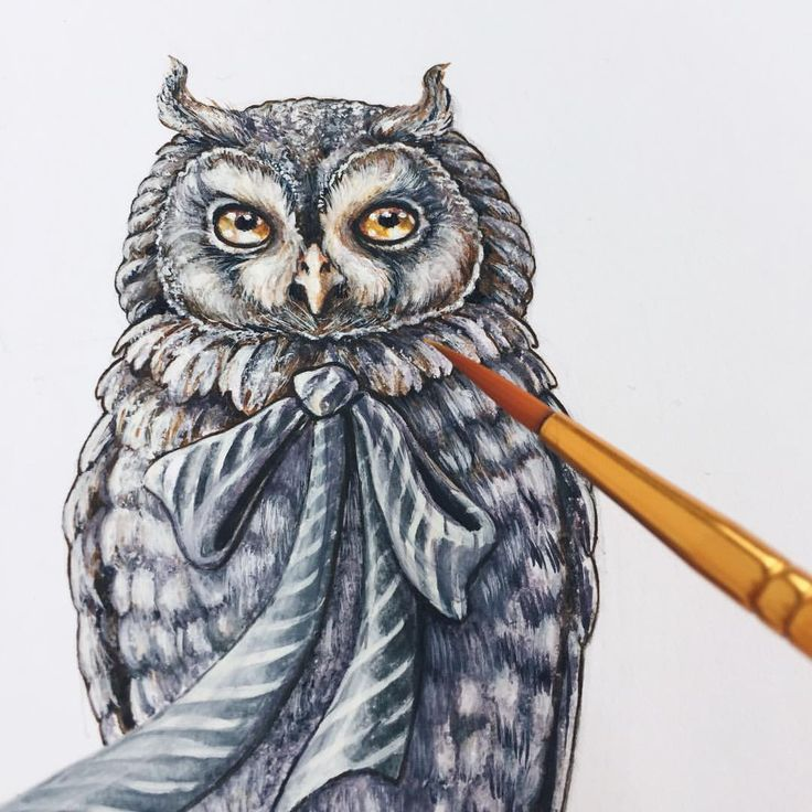 """Eeva Nikunen (@eevanikunen) on Instagram: """"Here is what I'm working on today. ✨A watercolour painting of an owl, and there may also be…"""""""