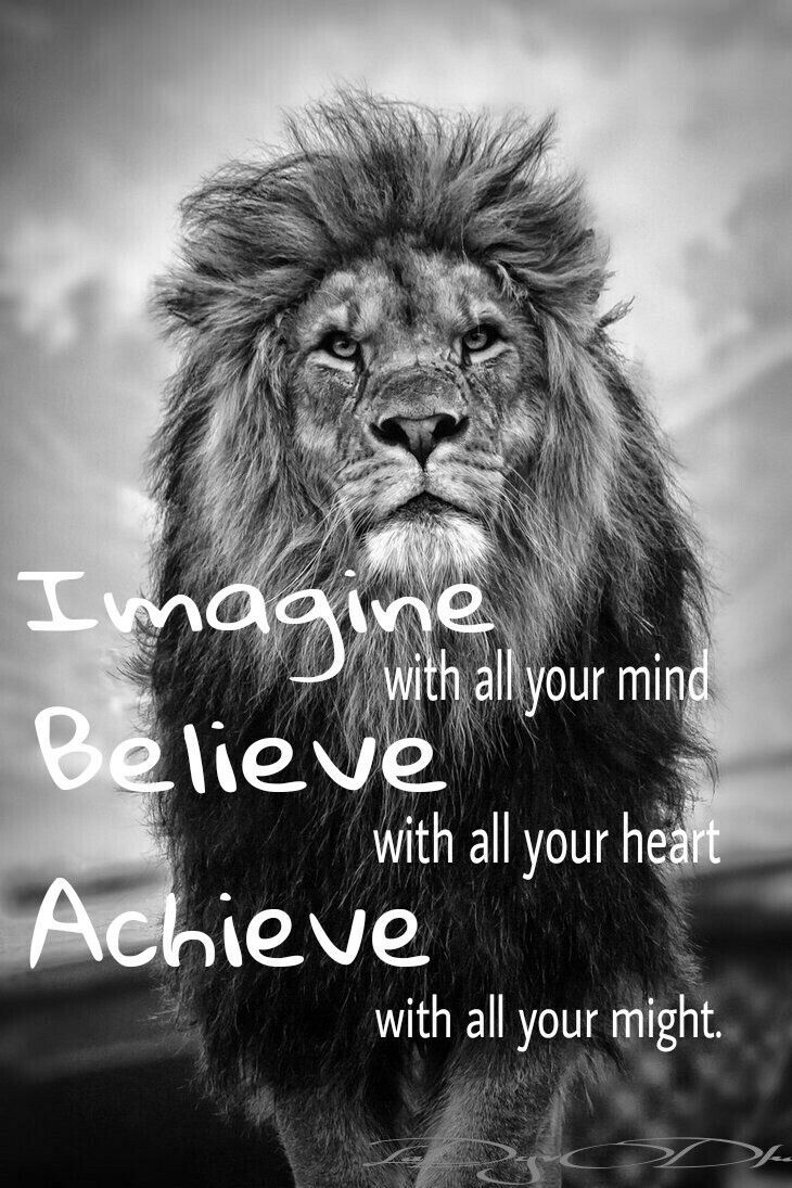 Pin By Sunardi Rfp On Sun Wu Kong Pinterest Lion Quotes Quotes