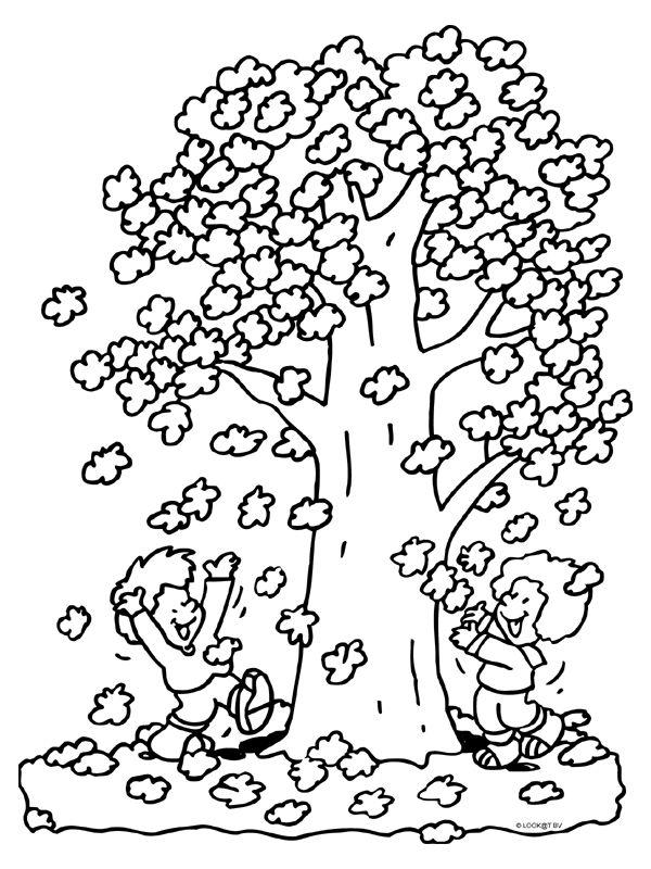 kleurplaat herfst blaadjes boom kleurplaten nl