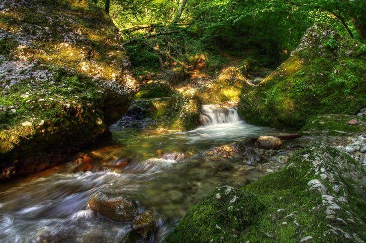 Jungle River by Bernhard Siegl (Burtn) y depositado en Deviant Art. Rio cerca de Salzburgo, Austria.