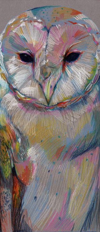 owl by Ryan Tippery