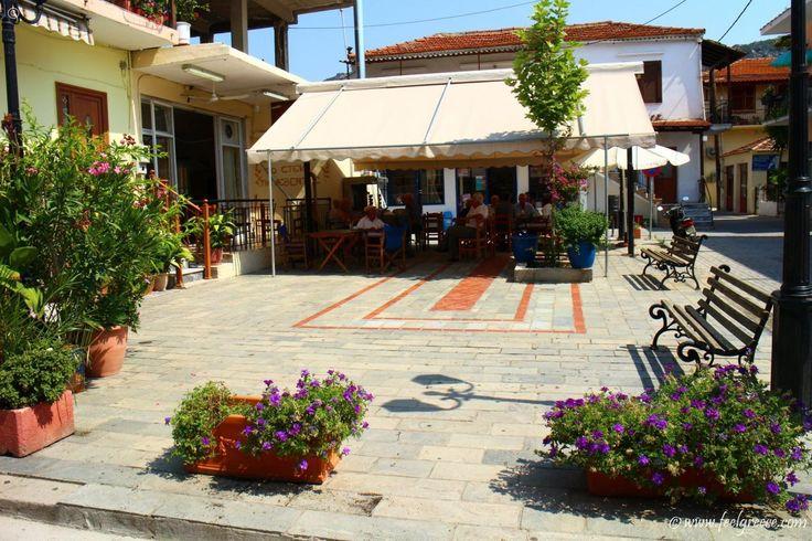 Talks at the village center cafe in Sykia, Sithonia, Halkidiki
