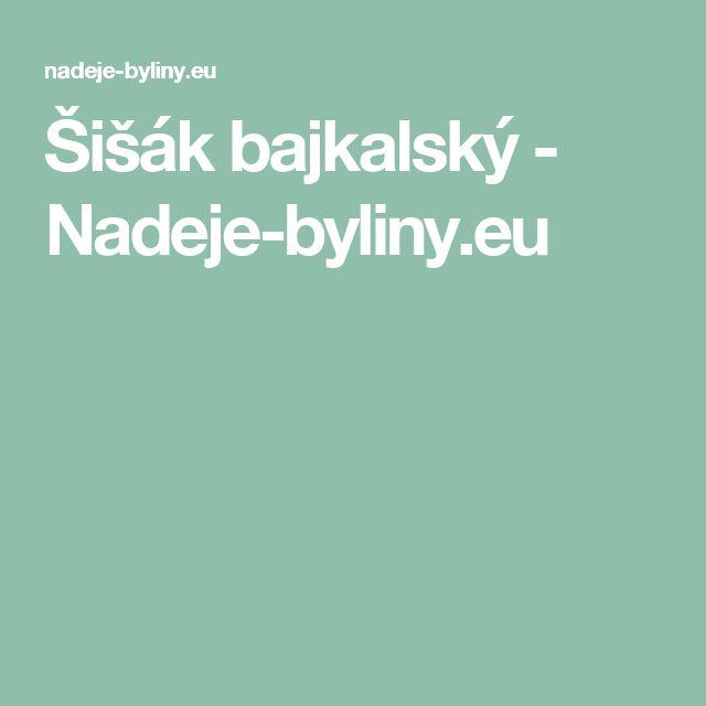 Šišák bajkalský - Nadeje-byliny.eu