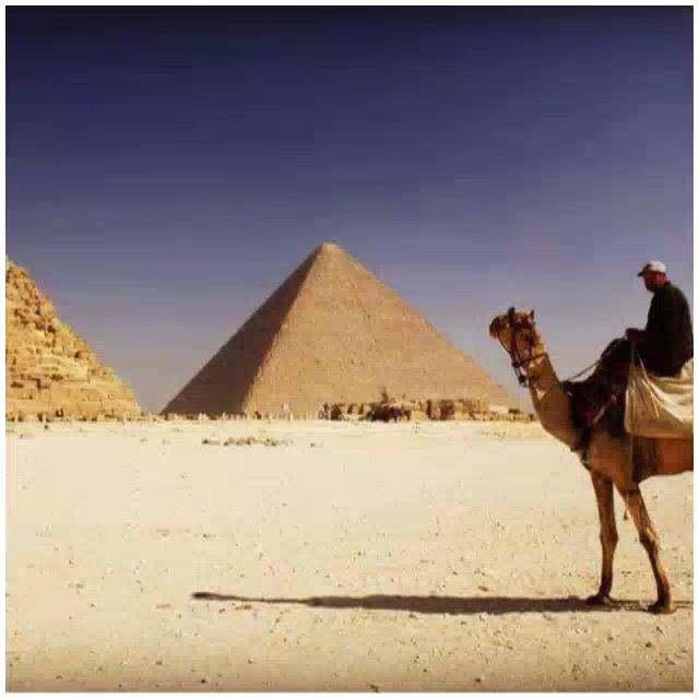 Take me back in time  🤔 تخيل ترجع بالزمن 🤔  #easttowestadventures #egypt #egyptianmuseum #cairo #travelblogger #travelphotography #pyramids #museum #egypt #ancientegypt #hapshepsut #statue #wanderlust #explorethepast #mummies #pharoahs #giza #cairo #thenile #africa #kingdoms
