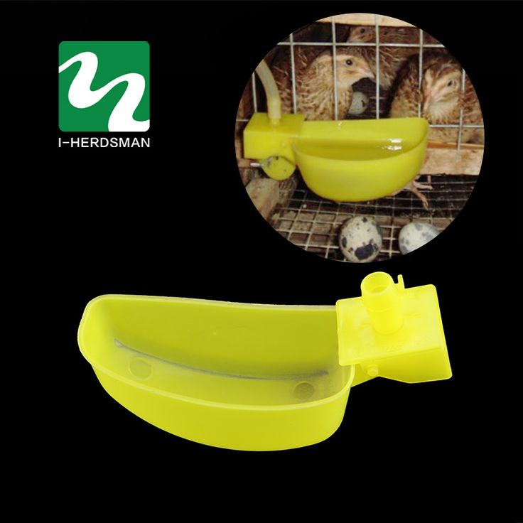 50pcs Automatic Waterer Cups Quail Birds Chicken water Pheasant Waterer Feeders Water bowls Wholesale // FREE Shipping //     Buy one here---> https://thepetscastle.com/50pcs-automatic-waterer-cups-quail-birds-chicken-water-pheasant-waterer-feeders-water-bowls-wholesale/    #catoftheday #kittens #ilovemycat #lovedogs #pup