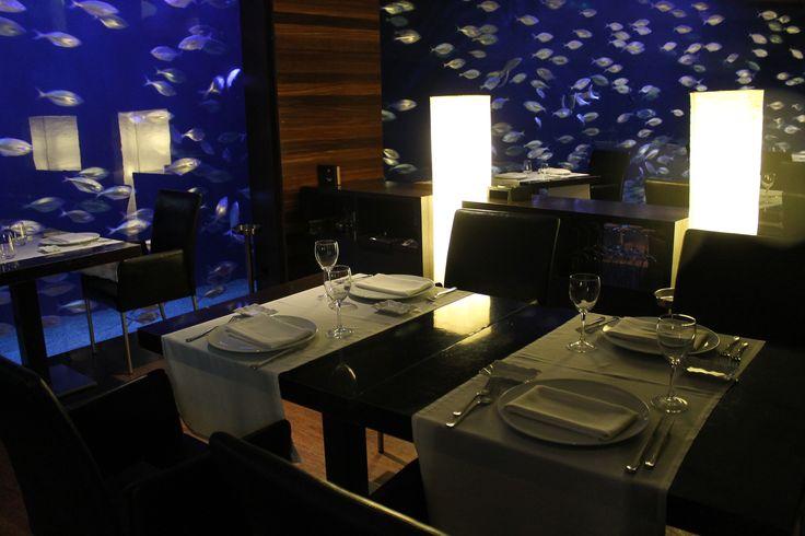 Despídete de marzo con una buena cena en el Rte. Submarino. ¡Tenemos una mesa para ti! #Restaurante #Restaurantesubmarino #Oceanografic #Valencia #Ciudaddelasartesylasciencias #Interior #Velada #Romantico #Acuario #Peces #Cena #Altacocina #Lugaresconencanto  www.restaurantesubmarino.es