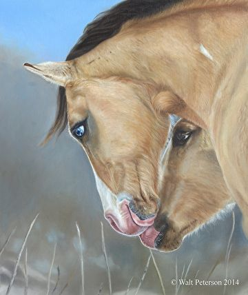 """""""Sire and Son"""" by Walt Peterson  ~ 24"""" x 20"""""""