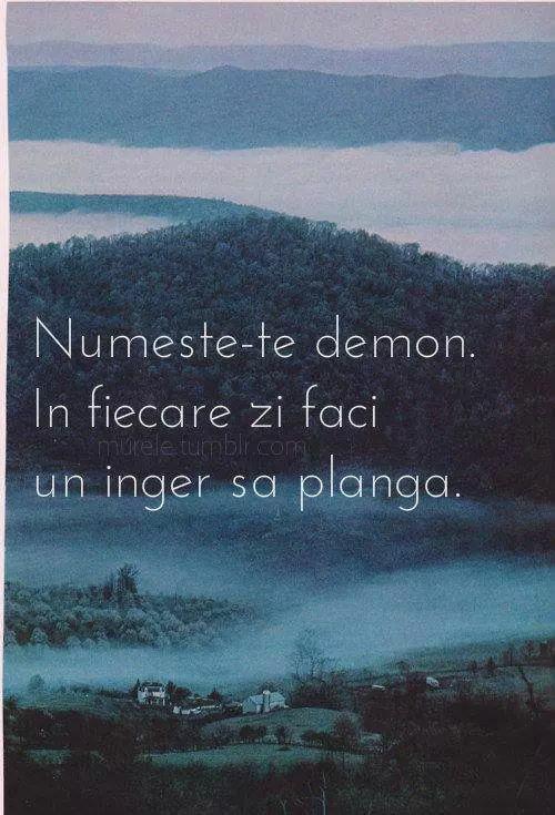 #citate #demon #inger