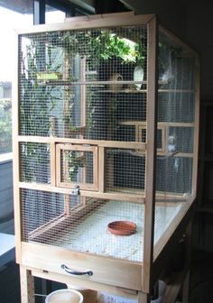 ♥ Pet Bird Cage Ideas ♥ bird flight cages