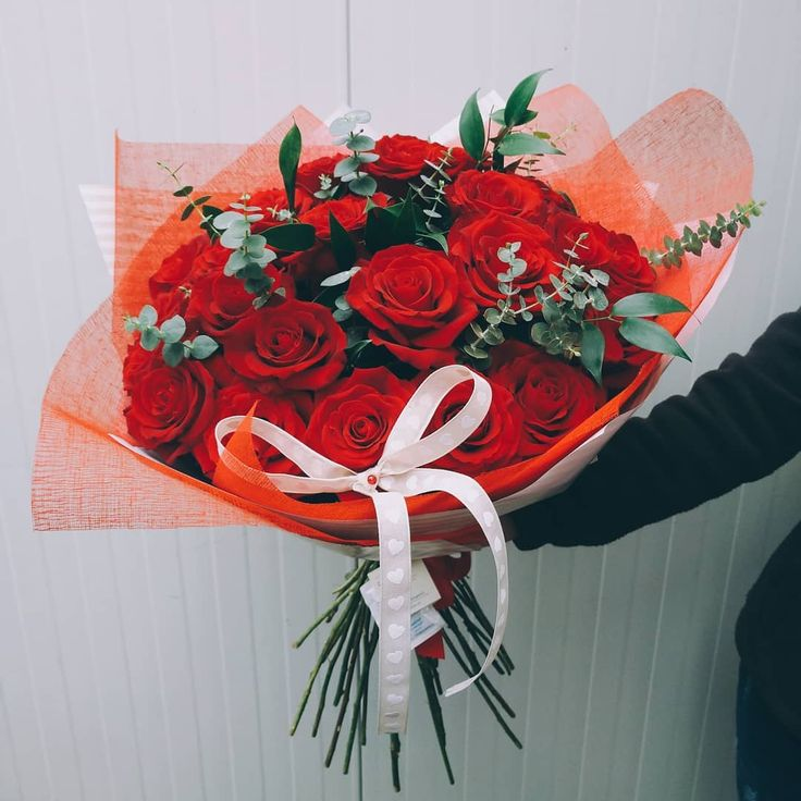 """Red roses are the best way to say """"I love you""""!"""