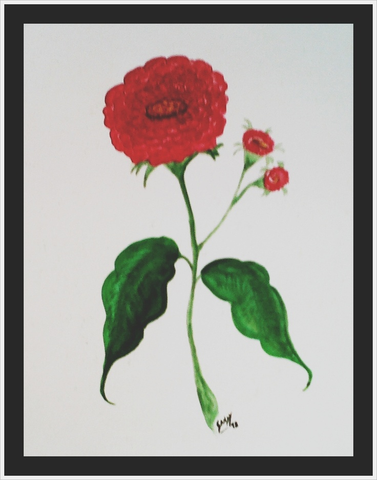 Carnations (watercolor) - 1998