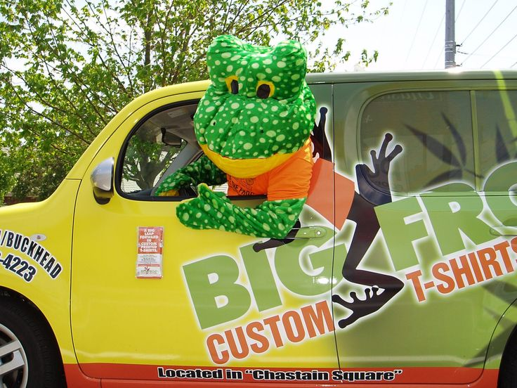 Frog and Car5
