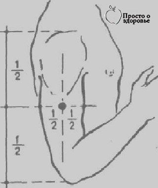 ВОЛШЕБНАЯ ТОЧКА ДЛЯ СНИЖЕНИЯ ЧУВСТВА ГОЛОДА И СТАБИЛИЗАЦИИ ОБМЕНА ВЕЩЕСТВ, Свойства - успокаивающая точка.  Воздействие - акупрессура применяется в виде легкого массажа при возникновении аппетита.  Продолжительность - 30 секунд.  Акупрессура проводится попеременно на обеих руках.  Воздействие на точку притупляет аппетит и регулирует (стабилизирует) обмен веществ.