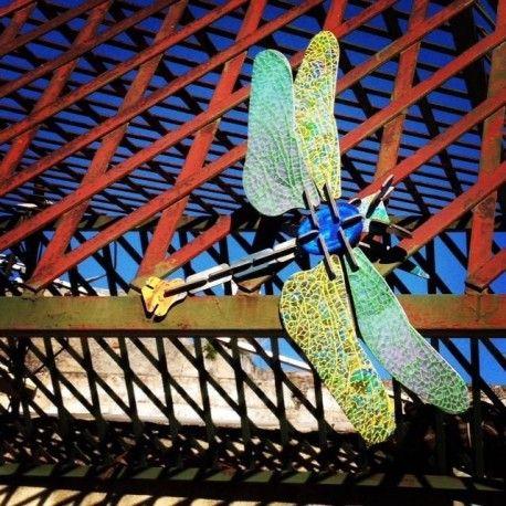 Studio Roof - Dragonfly